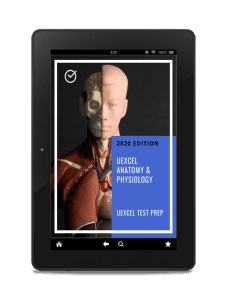 UExcel Anatomy & Physiology